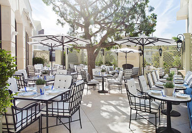 Restaurants in Beverly Hills Hotels thumbnail